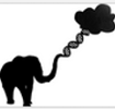 """Big data, Hadoop and cloud computing in genomics"" generates high interest"